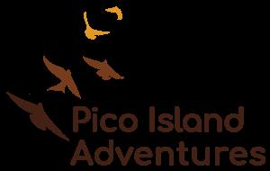 Pico Island Adventures